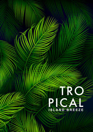 Tropical Palm Background. Summer Illustration Ilustração
