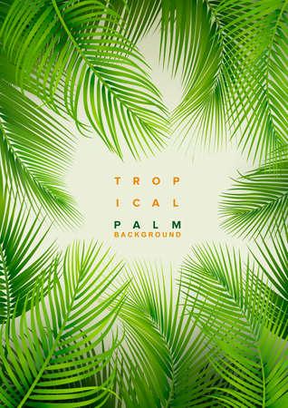 Tropical Palm Background. Summer Illustration Ilustração