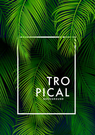 Tropical Palm Background. Summer Illustration Illustration