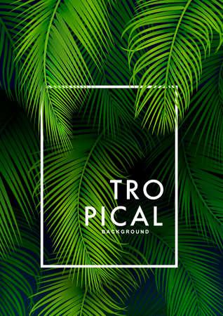 Tropical Palm Background. Summer Illustration Ilustrace