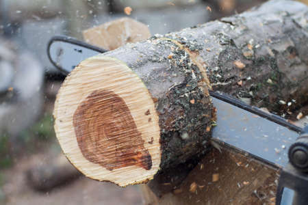 operaia: working saw and log2