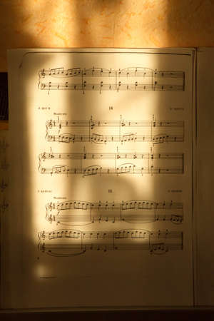 amadeus: easy notes with sun lines
