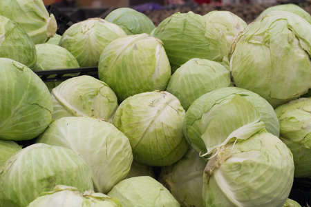 store shelf: cabbage on shelf in store Stock Photo