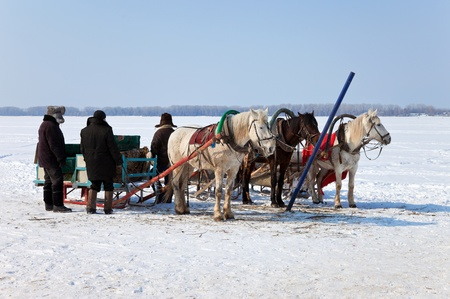 Three horses with sleds at the bank of frozen river in Russia