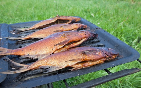 Just smoked fresh fish caught in Russian river Stock Photo - 13561867
