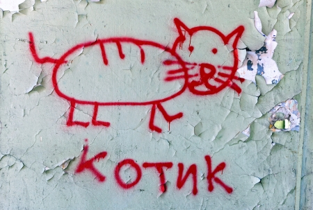 Cracked grunge brick wall background  Text in Russian  the cat  photo