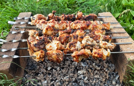 Shish kebab: slices of meat with sauce preparing on fire Stock Photo - 15835807