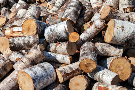 chock: Dry chopped birch firewood logs in pile. Nature background