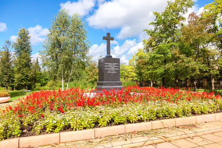 fallen tree: BOROVICHI, RUSSIA - AUGUST 16, 2016: Monument to the defenders of the Fatherland in the First World War. Text in Russian: Defenders of the Fatherland who died in Borovichi hospitals. Eternal memory