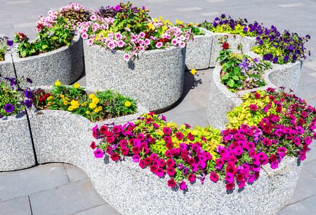 Granite decorative flower bed with different flowers on city street. Colorful flowers decorative composition in sunny day