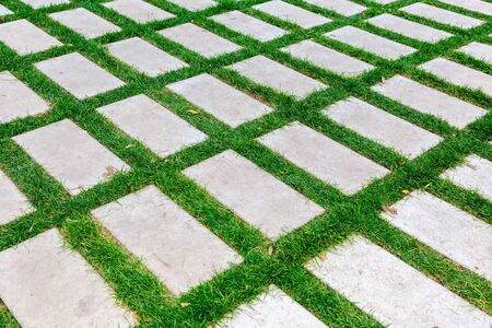Gray paving stones on the green grass as background texture close up