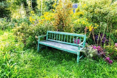 Old wooden bench at the flowers garden in summer sunny day Banco de Imagens