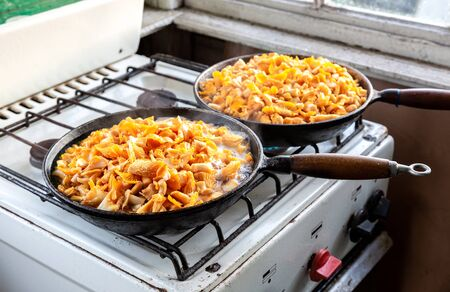 Mushrooms chanterelles are fried in an old cast-iron pan