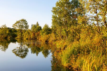 Ð¡lean calm lake on a summer evening with trees reflected on still water. Concept of ecology. Beauty in nature