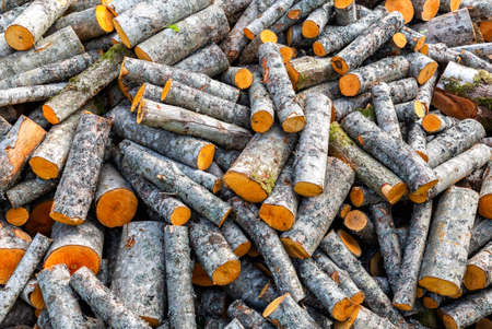 Chopped dry firewood as background. Stock pile of timber, chopped down trees. Preparation of firewood for the winter. Firewood background