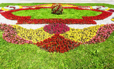 Flower bed with different colorful flowers on city street in sunny day