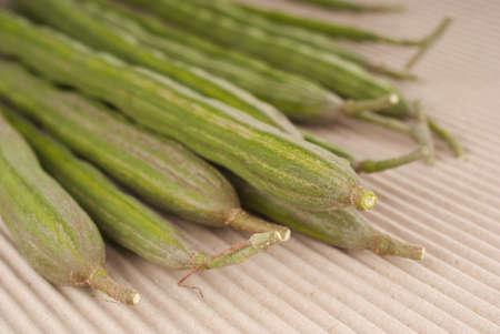 oleifera: Drumstick Spears also known as Moringa oleifera Stock Photo