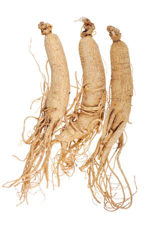 Dried Korean Ginseng; unsharpened file photo
