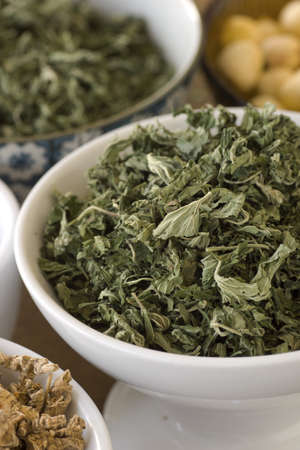 herbology: Dried Motherwort or Mother Wort; Non sharpened file Stock Photo