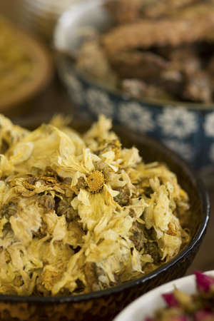 herbology: Dried Chrysanthemums Flowers; Non sharpened file Stock Photo