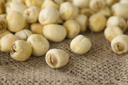 herbology: Lotus Seeds; Non sharpened file