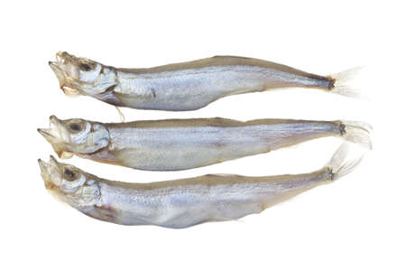 lanceolatus: Shishamo or Willow Leaf Fish Non sharpen file