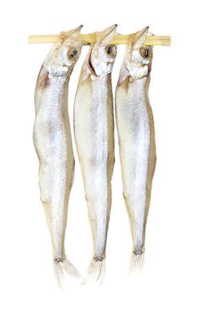 lanceolatus: Shishamo or Willow Leaf Fish Non sharpen file