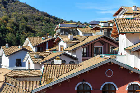 housing style: Rooftops of european style housing in perspective