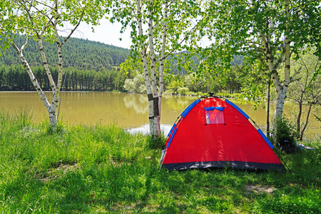 Rest in a red tent in a pine forest on the shore lake on a sunny day