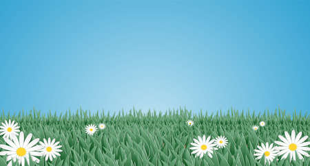 Vector illustration of grass and white flower in the garden. Paper art style. Digital craft design.