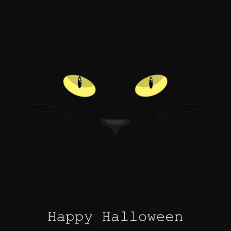 Halloween background vector illustration. Black cat on a black background with Happy Halloween text. Yellow cat eyes in the dark.
