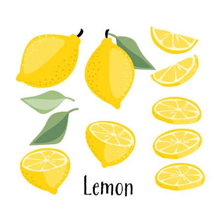 Lemon fruits collection.