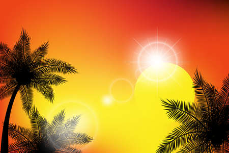 Summer tropical backgrounds with palms, sky and sunset