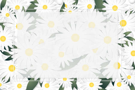 Spring and summer floral banner template of white daisy flowers and leaves with white frame and your copy space. Vector illustration. 向量圖像