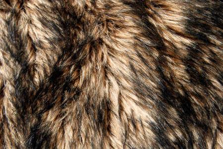 Close up of wolf fur