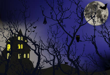 haunt: Enchanted forest with animals that hide and a large moon behind the branches of trees, vector illustration