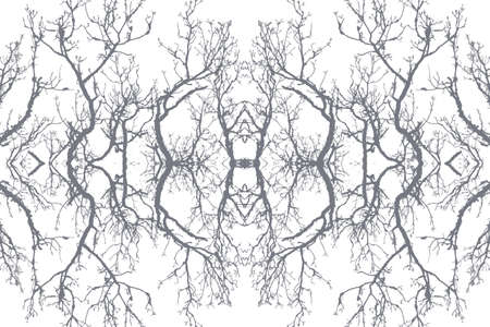 Abstract vector illustration of isolated tree branches Vector