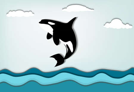 Orcinus orca Killer whale jumping high Vector