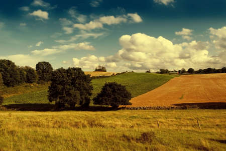 Farm fields with magical summer sky Stock Photo - 15982944