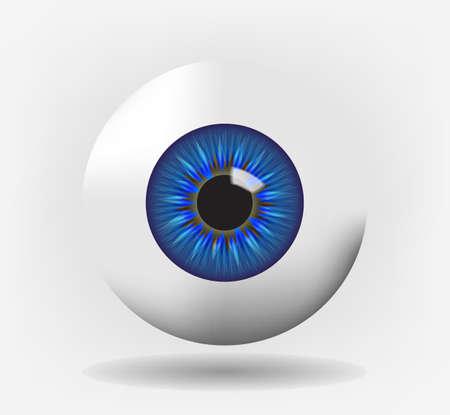 cornea: Bulbo oculare isolato con iris blu, eps10 vettoriale Vettoriali