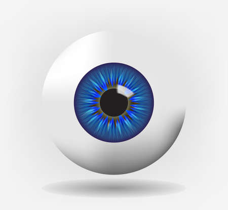 Isolated eyeball with blue iris, eps10 vector