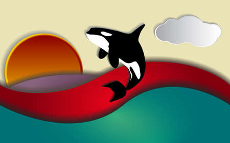 Orcinus orca, Killer whale jumping in sunset Vector