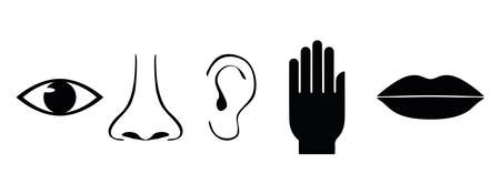 Icon set of five human senses. Vision, smell, hearing, touch, taste or illustration symbol of eye, nose, ear, hand, mouth, simple flat vector illustration design Иллюстрация