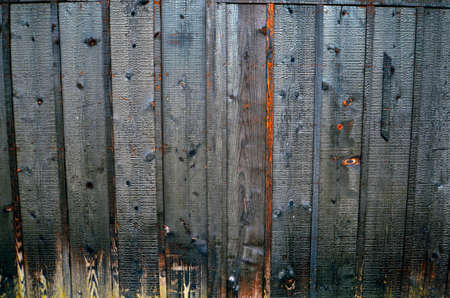 wooden floors: a wood wall textures background