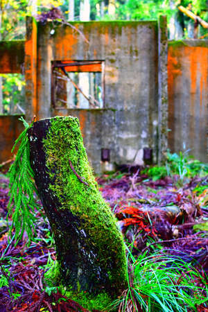 The decayed house of the mountain in Kyoto.
