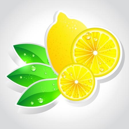 lemon slice: lemon