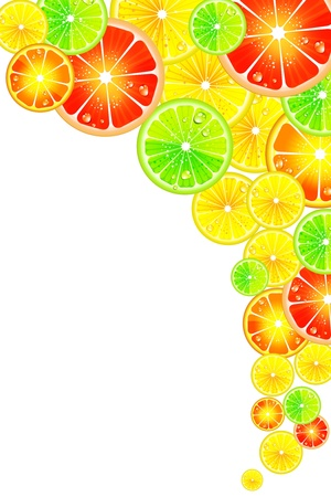 oranges: Citrus background Illustration