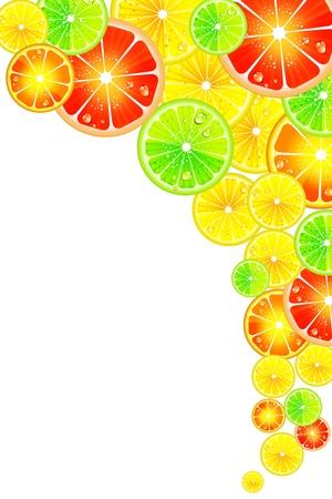 orange slice: Citrus background Illustration