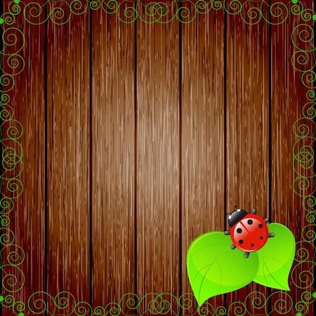 ladybugs: Ecological background