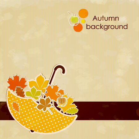 water chestnut: Autumn background with colored leaves and umbrella